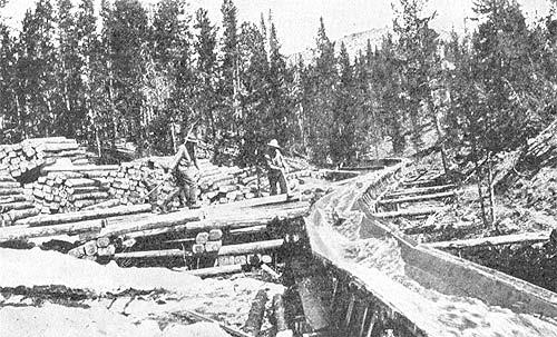 Saltofamerica article the story of the american lumbering industry in the west the flume is used to transport logs the flume is a water trough which may be as long as sixty miles it began to be used in the redwoods about fandeluxe Images